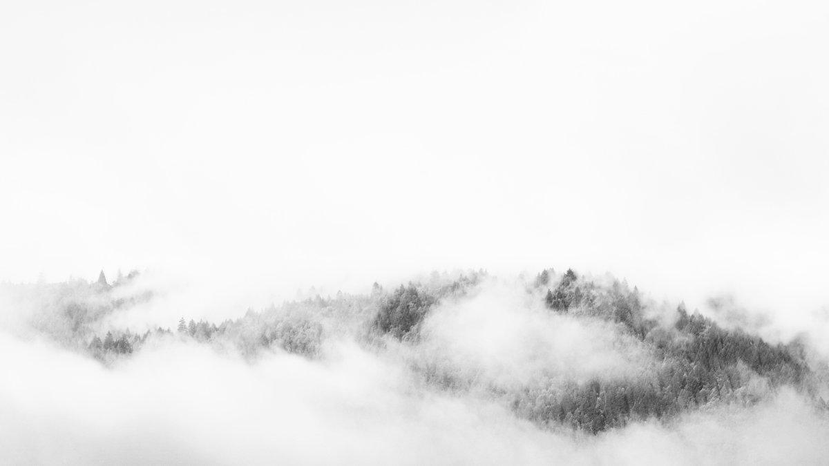 Zen Fog Mountain (photo)
