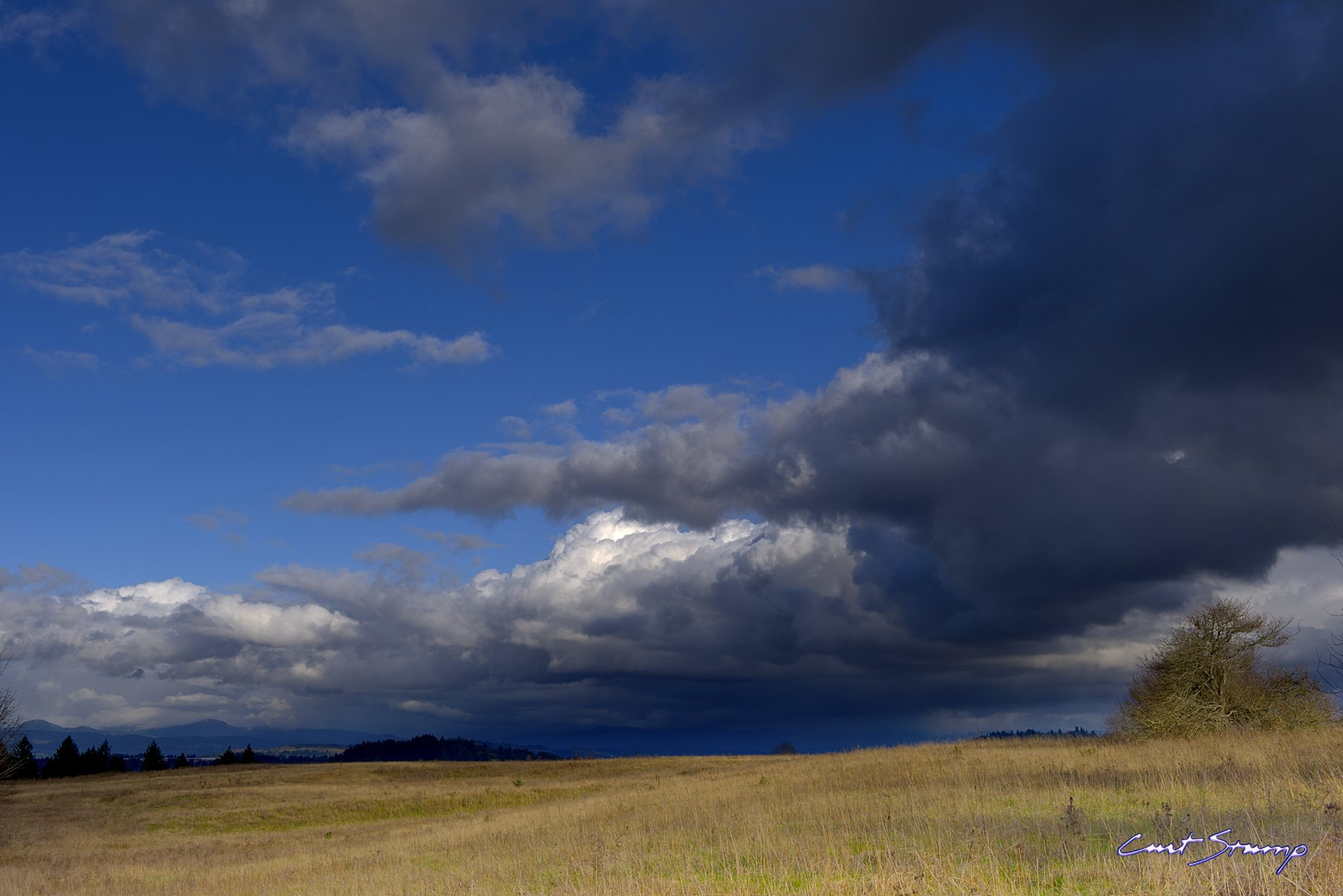 An open field with blue sky and storm clouds as seen from Powell Butte, Portland, Oregon.