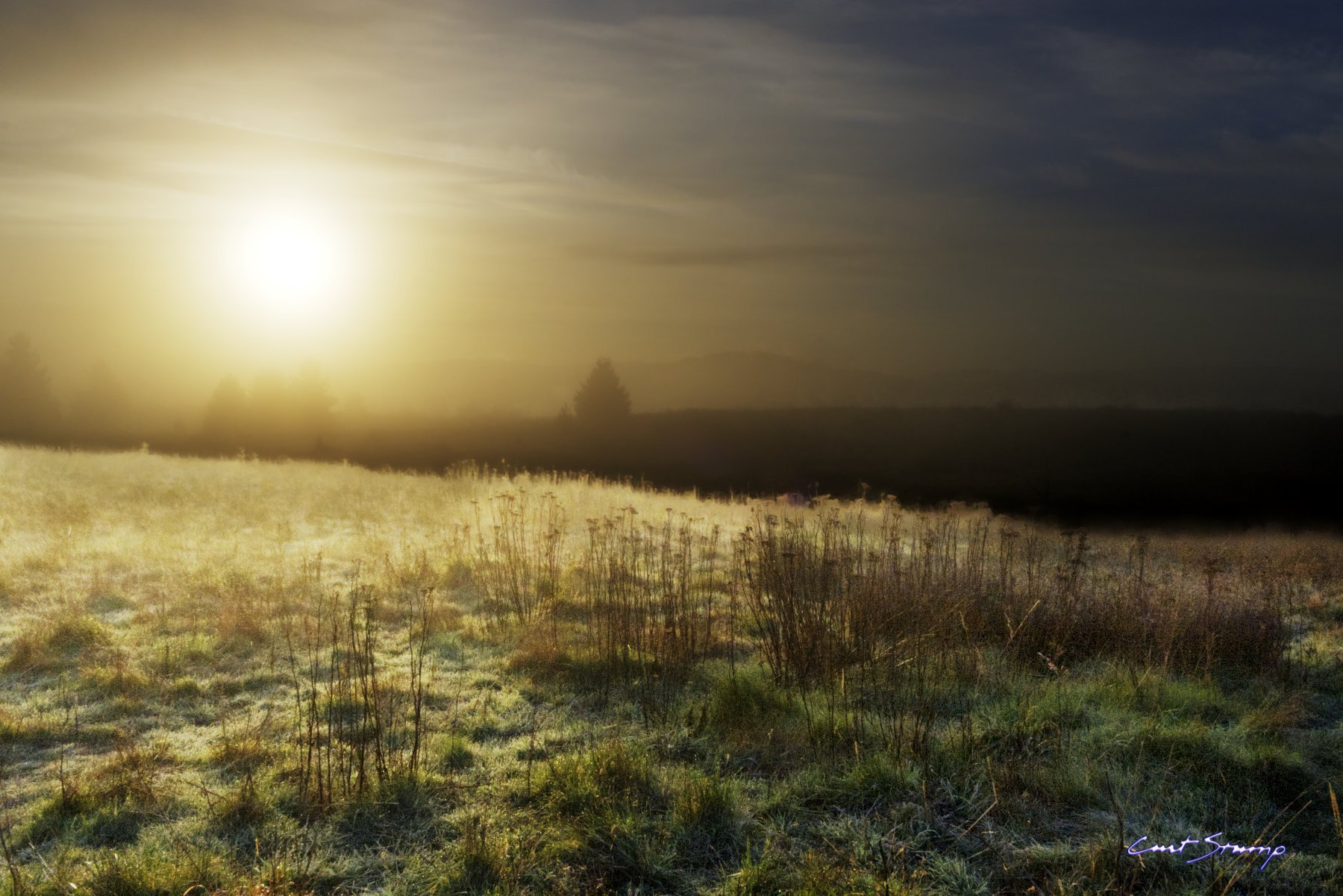 A mystical morning with the sun and a frosty field. Sunrise from Powell Butte, Portland, Oregon.